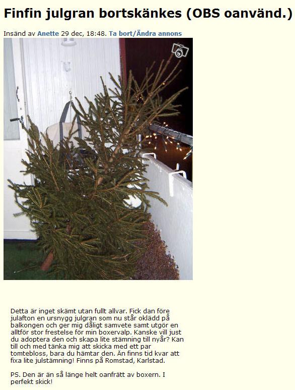Finfin julgran bortskänkes..